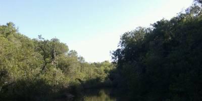 Muy lindo campo, con costas de arroyo