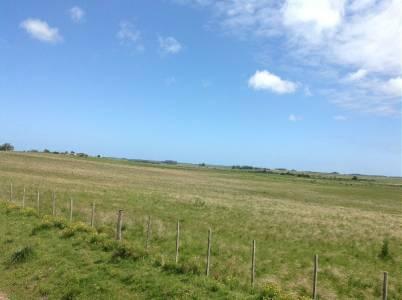 Campo en Garzon de Ruta 9 hacia el lado del mar.