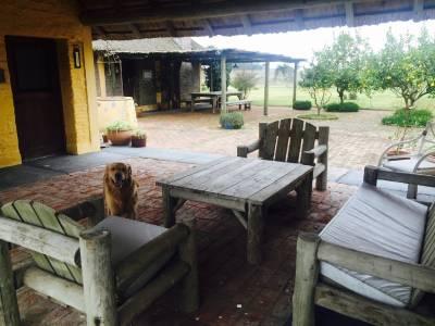 Campo en Paraje Jose Ignacio, muy cerca de Garzon y Pueblo Jose Ignacio.