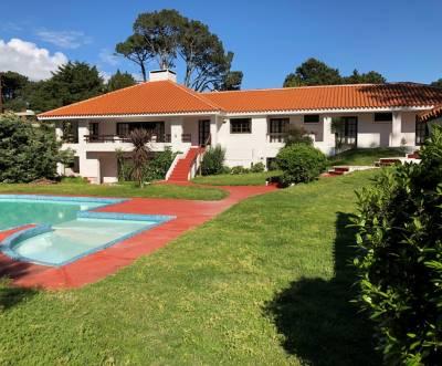 Mansa 6 dormitorios, muy buena construcción y excelente estado.