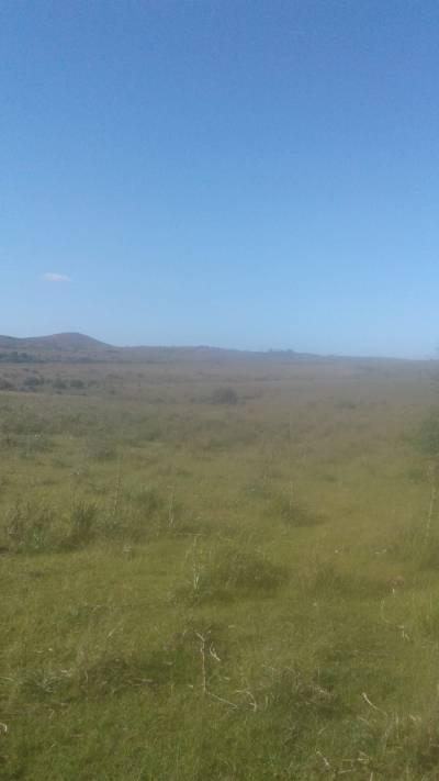 Chacra en Uruguay, Ruta 12, Pueblo Edén
