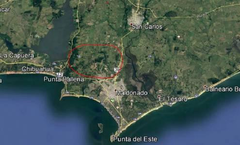 CHACRAS EN URUGUAY, PUNTA DEL ESTE, PUNTA BALLENA