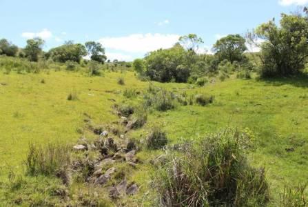 Chacra en Uruguay,  Ruta 12 ,  Oportunidad!!, con espectacular entorno natural