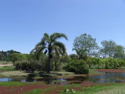 CHACRAS EN URUGUAY, PUNTA DEL ESTE , PUNTA BALLENA