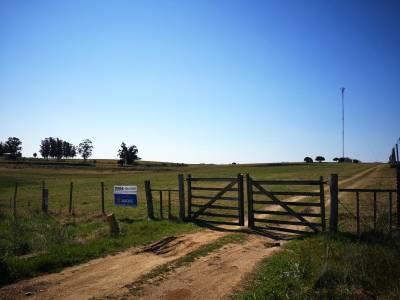 Campo Chacra en Uruguay, Punta del Este, Laguna del Sauce, Ruta 12