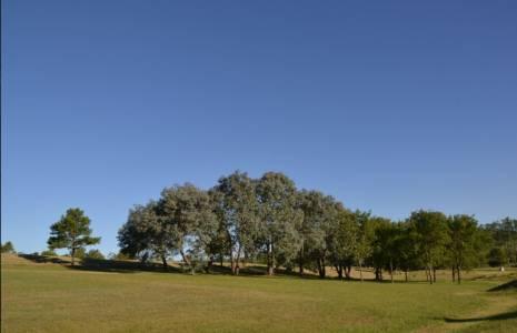 Terreno en Punta del Este, Chacras del Pinar, Camino Lussich
